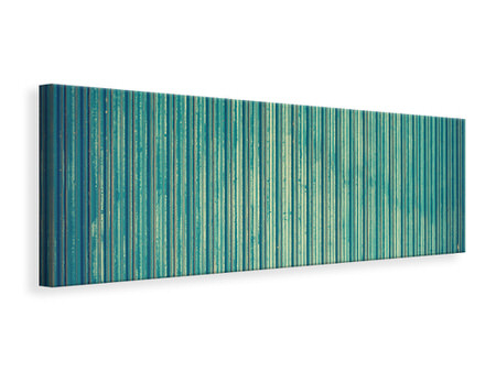 Panoramic Canvas Print Strip of nature