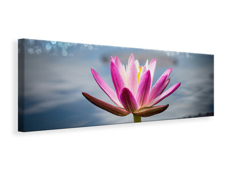 Panoramic Canvas Print Lotus In The Morning Dew
