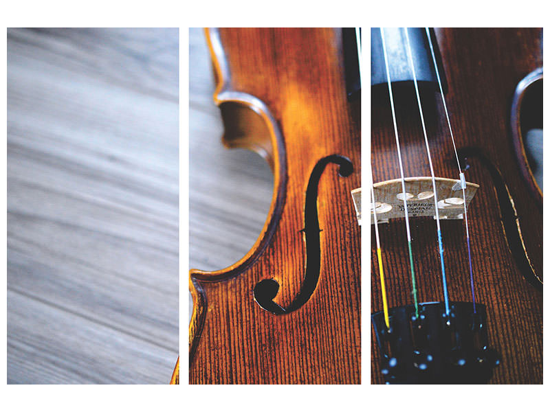 3 Piece Canvas Print Close up violin 2