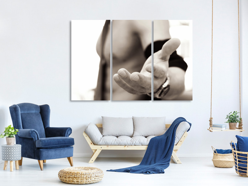 3 Piece Canvas Print Come over....