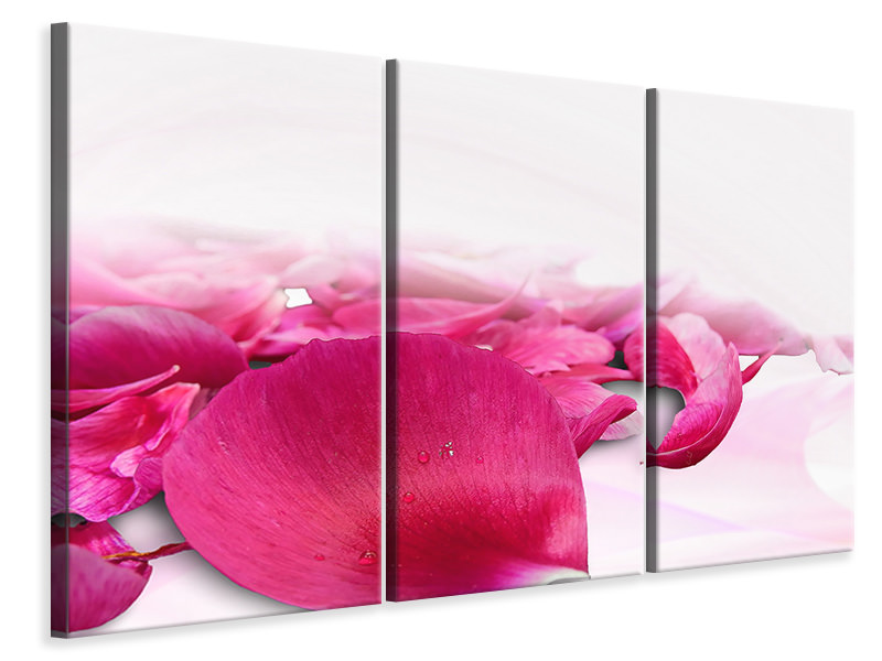 3 Piece Canvas Print Rose petals in pink 3
