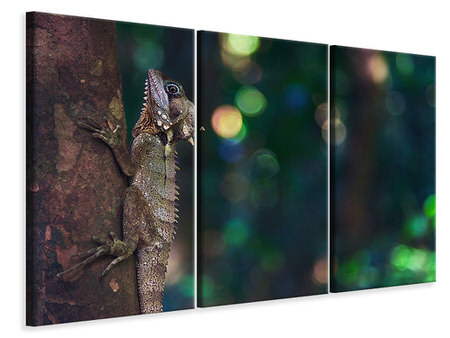 3 Piece Canvas Print The lizard
