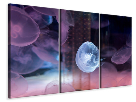 3 Piece Canvas Print The Beauty Of Jellyfish