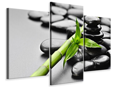 Modern 3 Piece Canvas Print Polished Stones