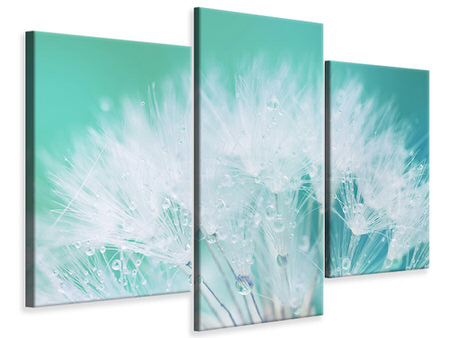 Modern 3 Piece Canvas Print Close Up Dandelion In Morning Dew