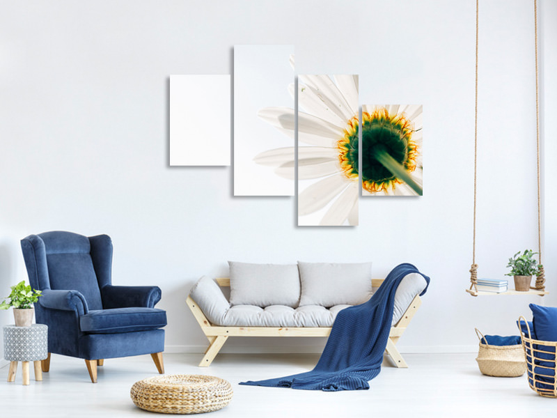 Modern 4 Piece Canvas Print A daisy