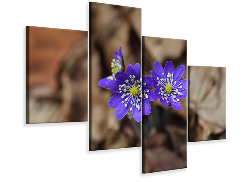 Modern 4 Piece Canvas Print wildflowers