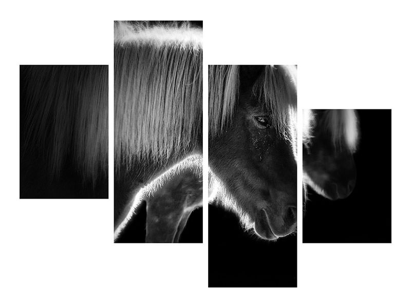 Modern 4 Piece Canvas Print Two Beautiful Horses