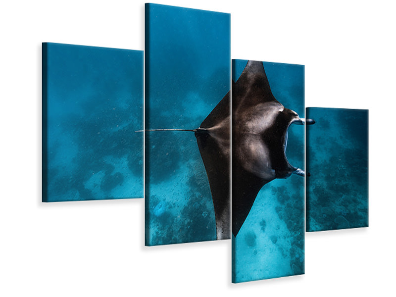 Modern 4 Piece Canvas Print Manta Fly