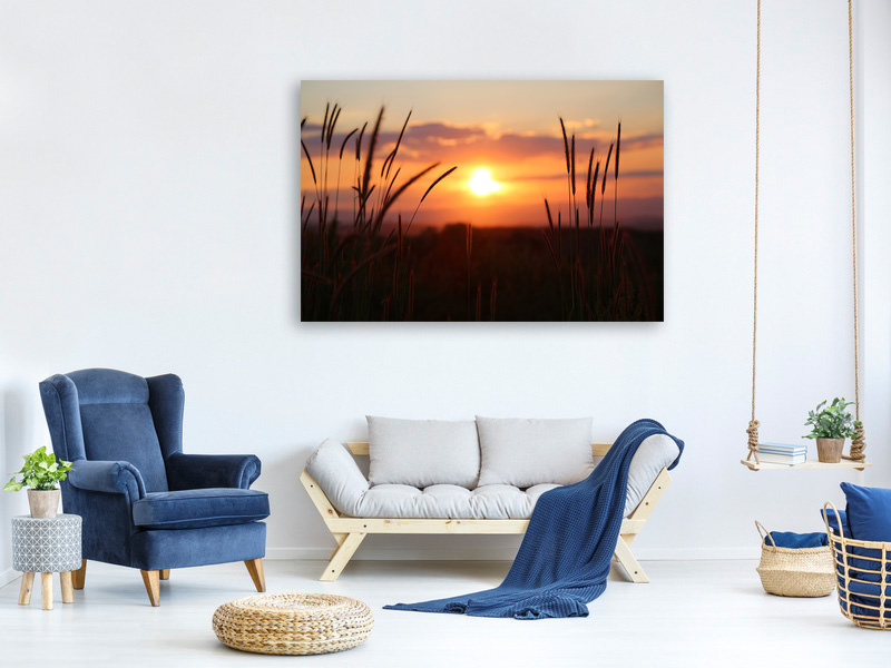 Canvas print Adorable sunset