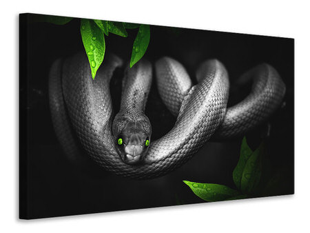 Canvas print Attention snake