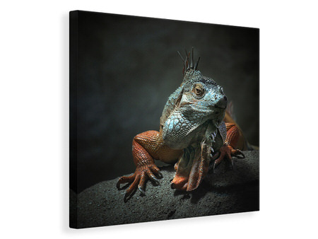 Canvas print I Am The King, Who Else