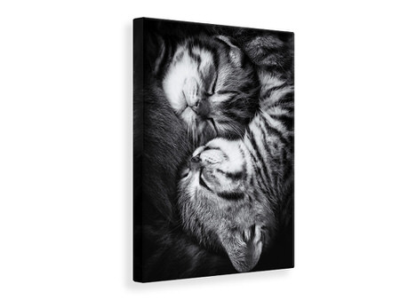 Canvas print Yin And Yang