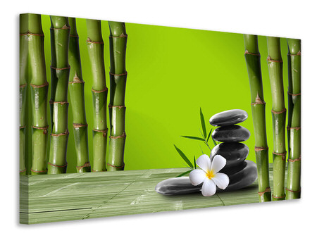 Canvas print Bamboo