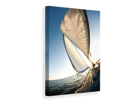 Canvas print Sailing