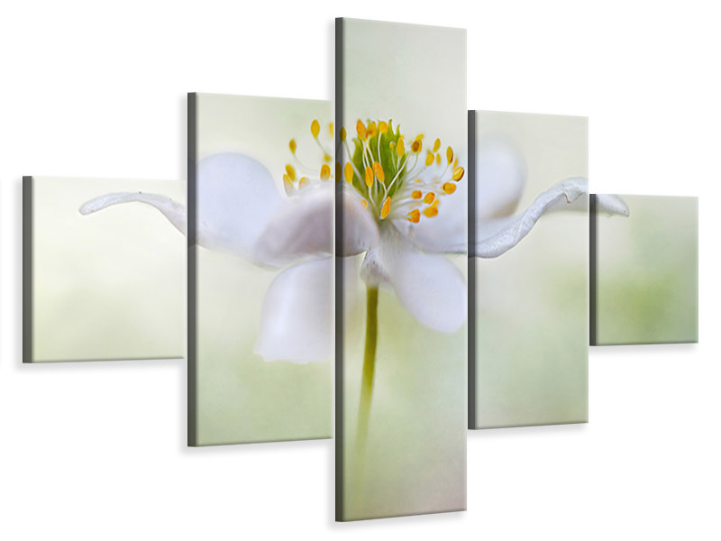 5 Piece Canvas Print Nemorosa