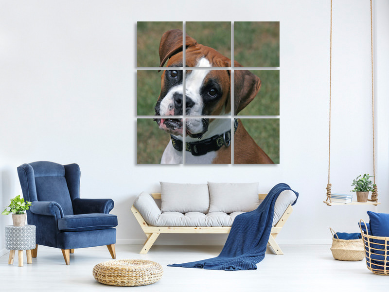 9 Piece Canvas Print Play with me !
